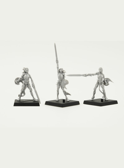 Valkyries of Alahan 2