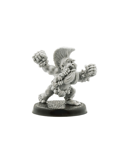 Blood Bowl Trollslayer #1